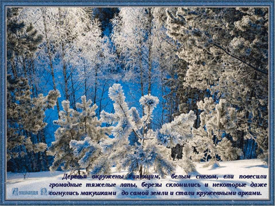 Деревья окружены сияющим, белым снегом, ели повесили громадные тяжелые лапы, ...