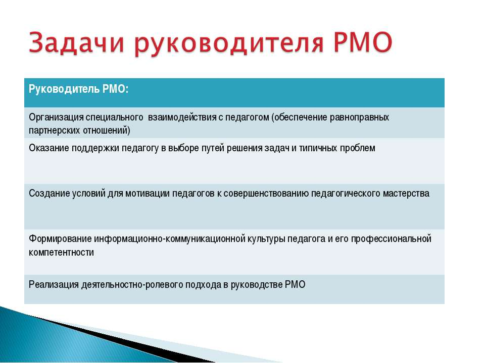 Руководитель РМО: Организация специального взаимодействия с педагогом (обеспе...