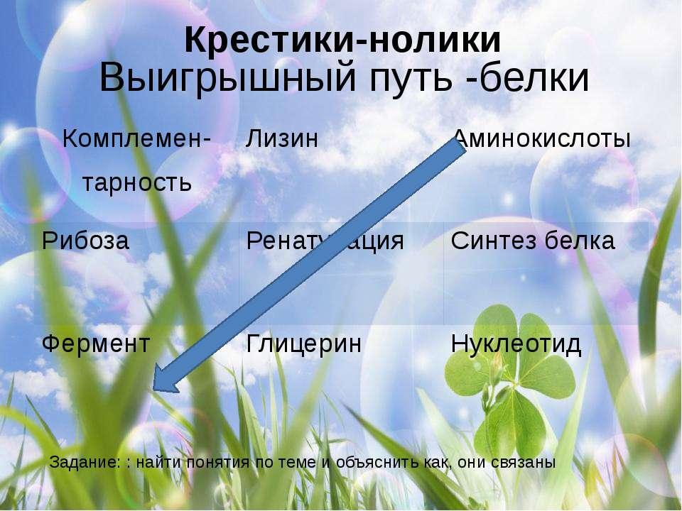 Выигрышный путь -белки Задание: : найти понятия по теме и объяснить как, они ...