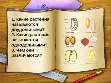 1. Какие растения называются двудольными? 2. Какие растения называются однодо...