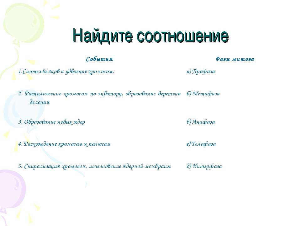 Найдите соотношение События Фазы митоза 1.Синтез белков и удвоение хромосом. ...