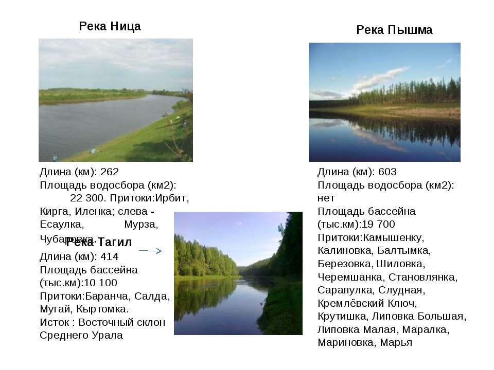 Река Ница Длина (км): 262 Площадь водосбора (км2): 22 300. Притоки:Ирбит, Кир...