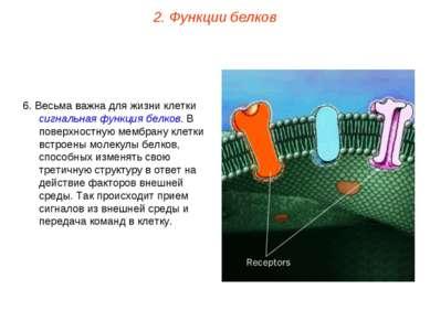 6. Весьма важна для жизни клетки сигнальная функция белков. В поверхностную м...