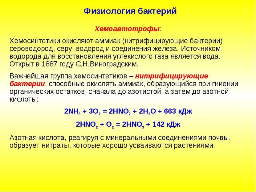 Физиология бактерий Хемоавтотрофы: Хемосинтетики окисляют аммиак (нитрифициру...