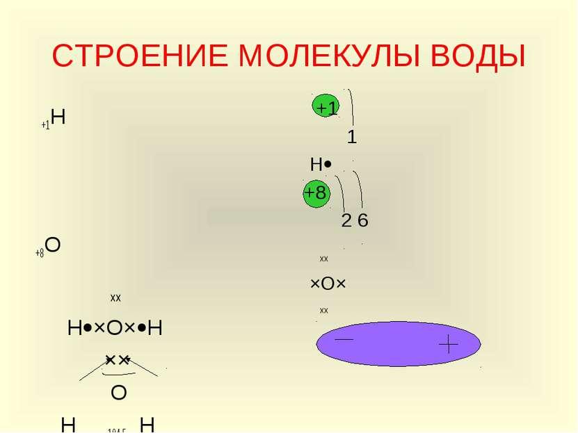 СТРОЕНИЕ МОЛЕКУЛЫ ВОДЫ +1Н +8О ×× Н ×О× Н ×× О Н 104,5 Н +1 1 Н +8 2 6 ×× ×О×...
