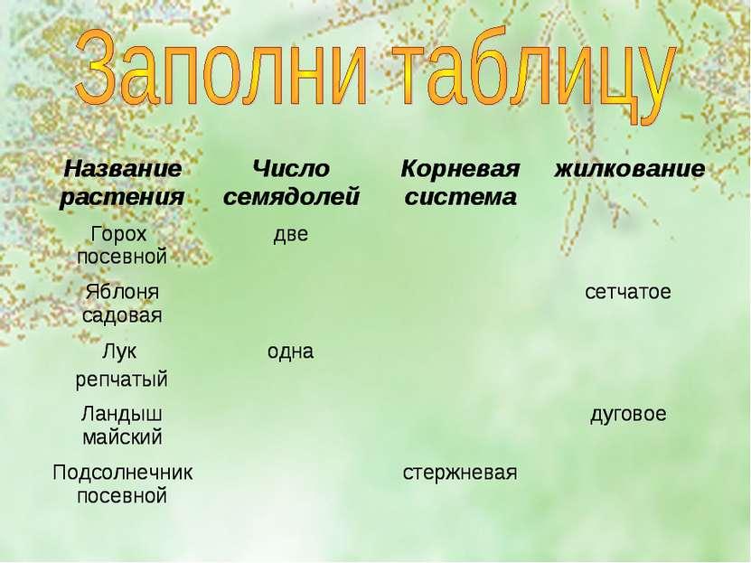 Название растения Число семядолей Корневая система жилкование Горох посевной ...