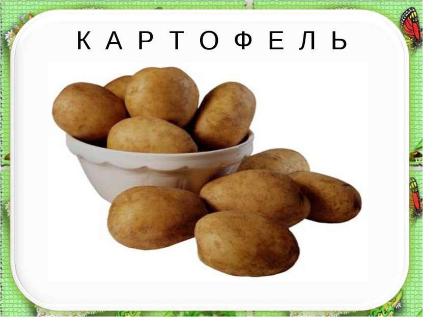К А Р Т О Ф Е Л Ь
