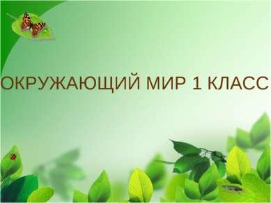 ОКРУЖАЮЩИЙ МИР 1 КЛАСС