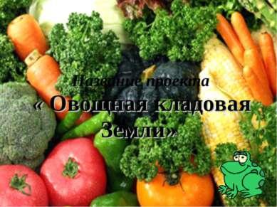 Название проекта « Овощная кладовая Земли»