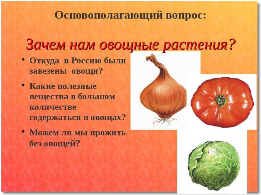 Основополагающий вопрос: Зачем нам овощные растения? Откуда в Россию были зав...