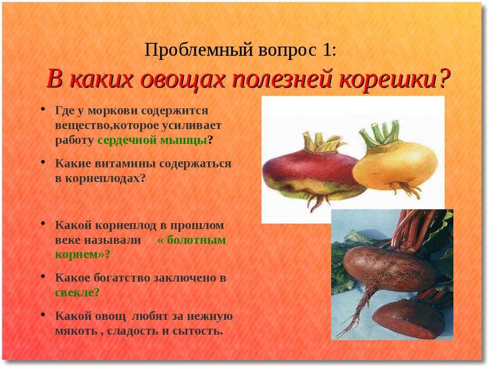 Проблемный вопрос 1: В каких овощах полезней корешки? Где у моркови содержитс...