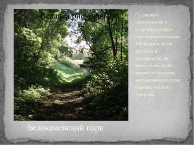 По данным исследований в старинных парках насчитывается свыше 100 видов и фор...