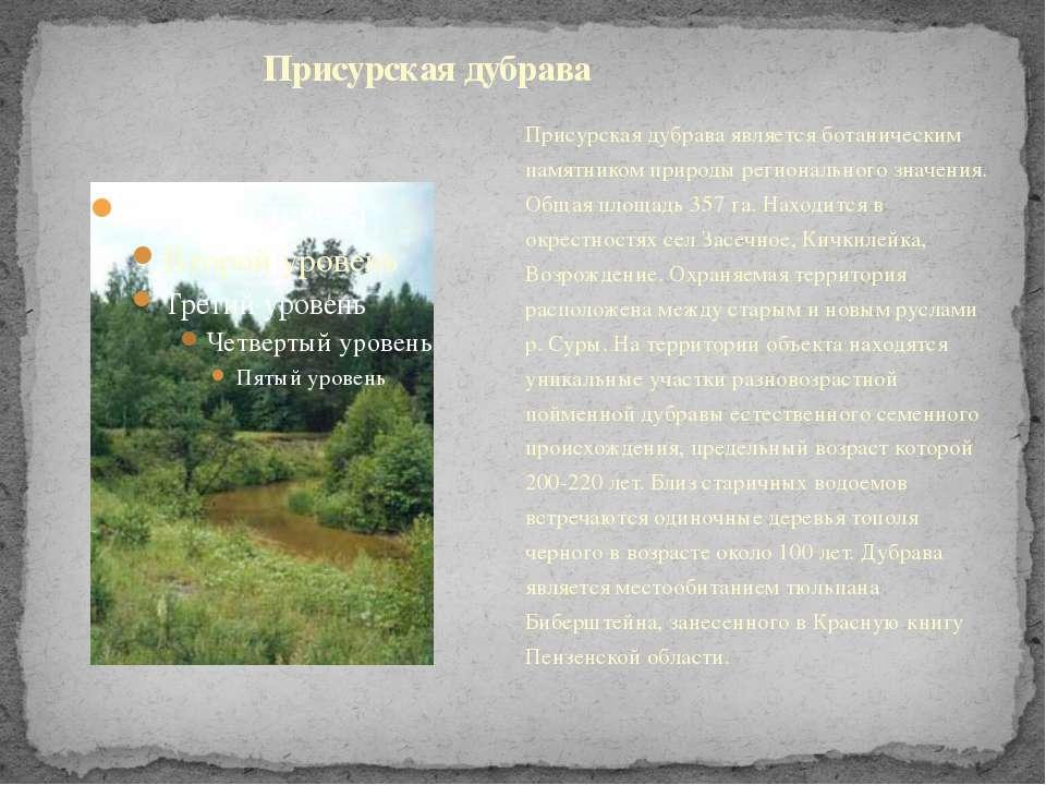 Присурская дубрава является ботаническим памятником природы регионального зна...