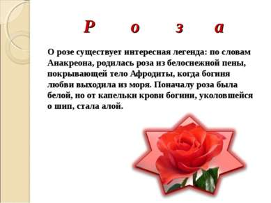 Р о з а О розе существует интересная легенда: по словам Анакреона, родилась р...