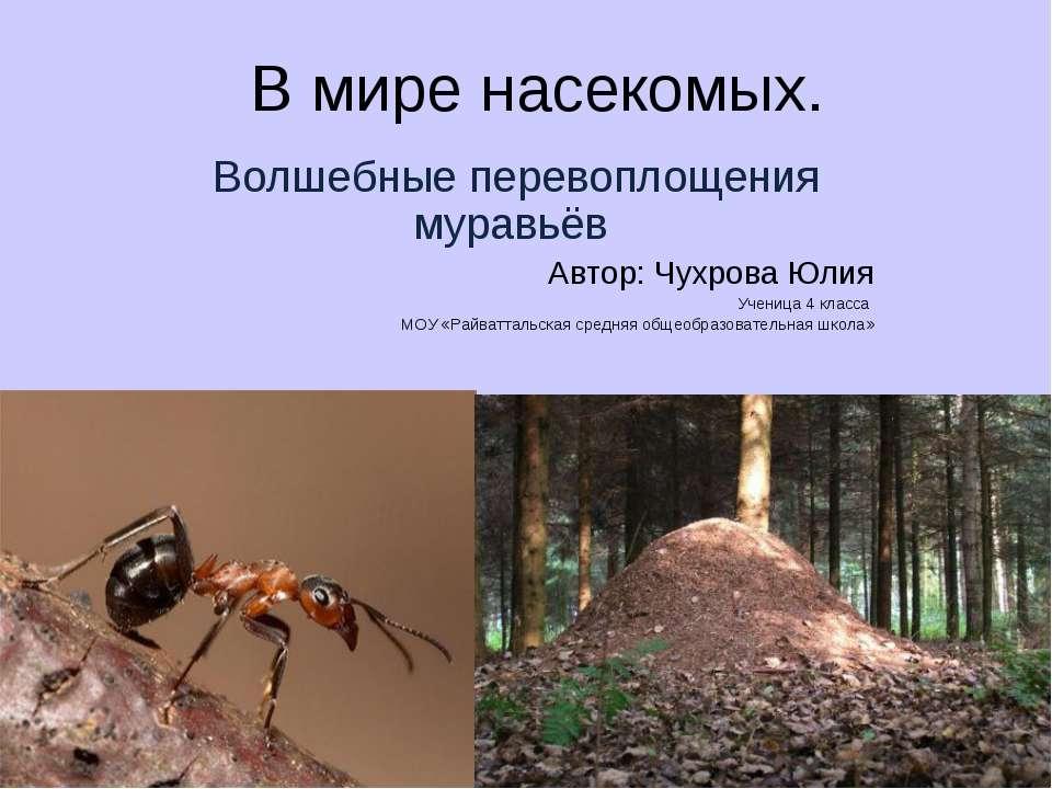 В мире насекомых. Волшебные перевоплощения муравьёв Автор: Чухрова Юлия Учени...