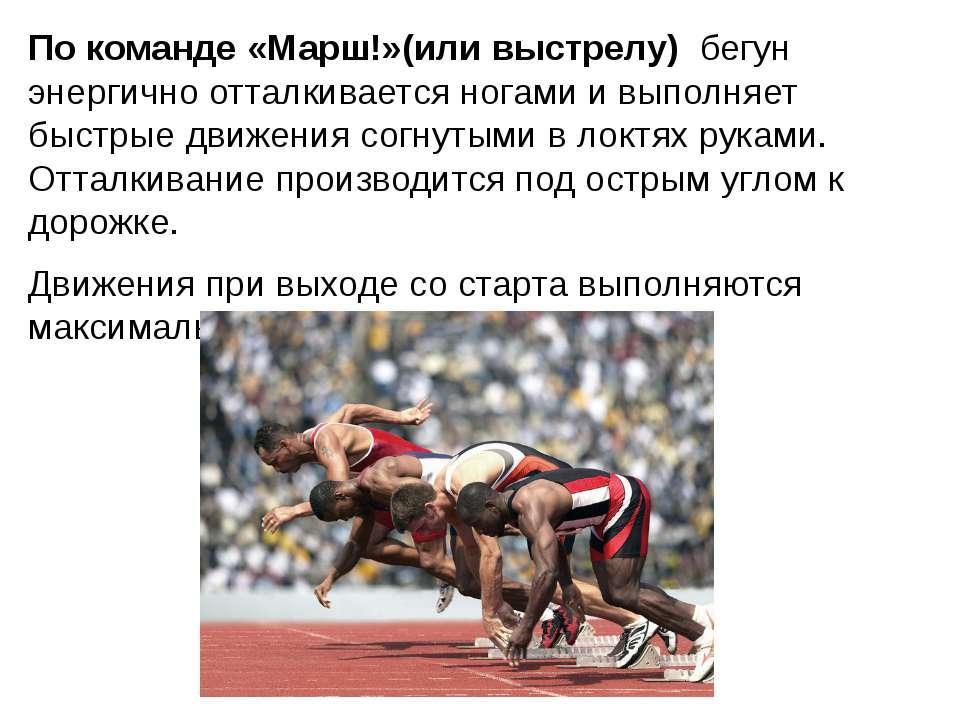 По команде «Марш!»(или выстрелу) бегун энергично отталкивается ногами и выпол...