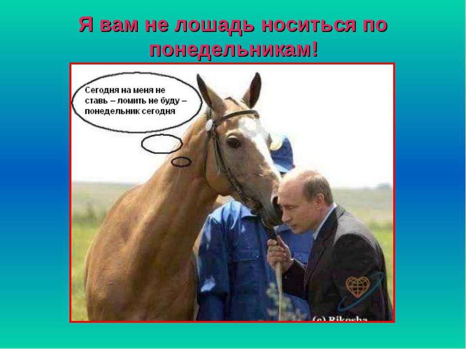 Я вам не лошадь носиться по понедельникам!