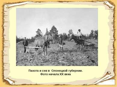 Пахота и сев в Олонецкой губернии. Фото начала XX века