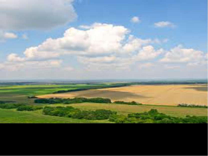Процент обработанной земли самый высокий в мире – 45%!