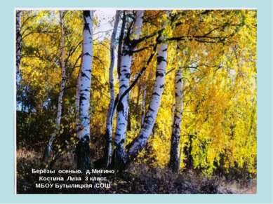 Берёзы осенью. д.Митино Костина Лиза 3 класс МБОУ Бутылицкая СОШ