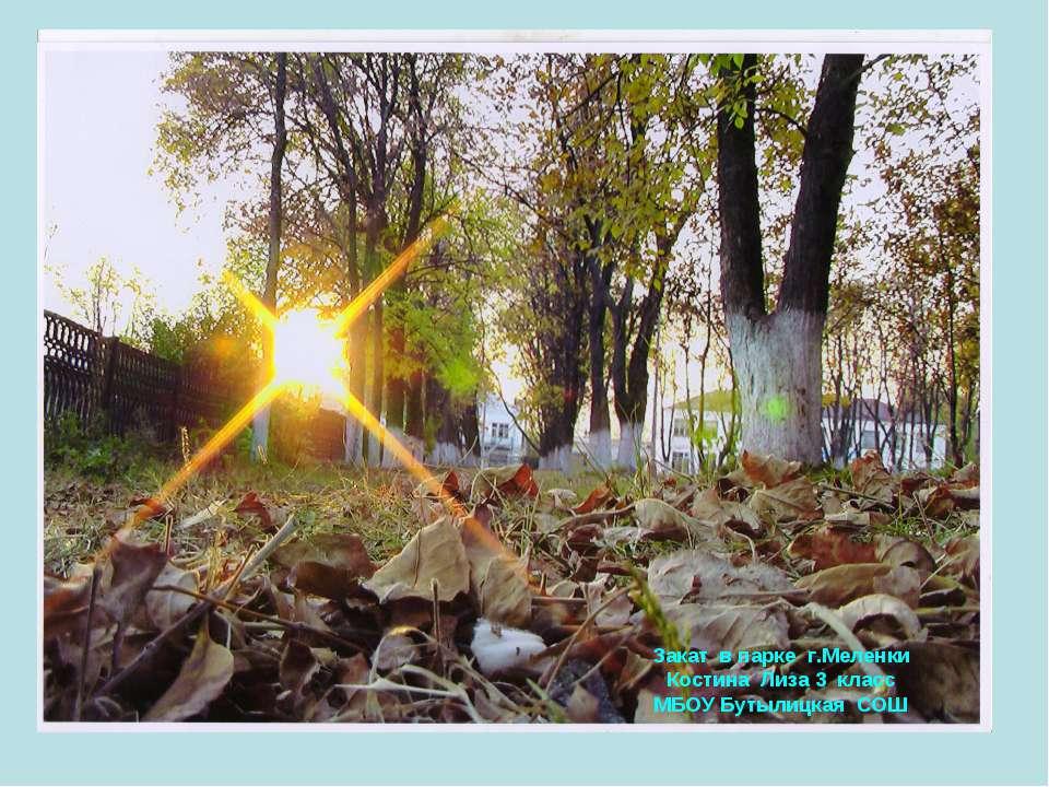 Закат в парке г.Меленки Костина Лиза 3 класс МБОУ Бутылицкая СОШ