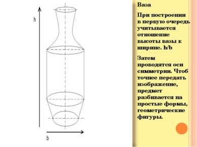 Ваза При построении в первую очередь учитывается отношение высоты вазы к шири...