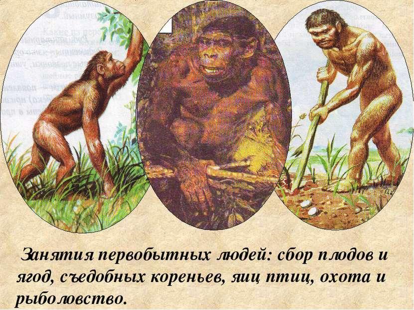 Занятия первобытных людей: сбор плодов и ягод, съедобных кореньев, яиц птиц, ...
