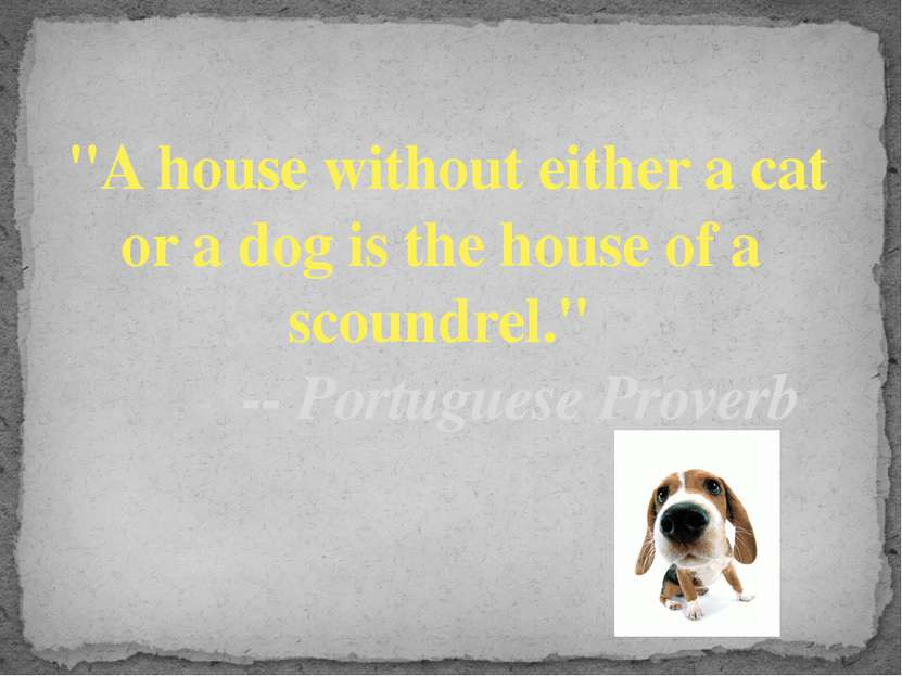 """""""A house without either a cat or a dog is the house of a scoundrel."""" ..."""