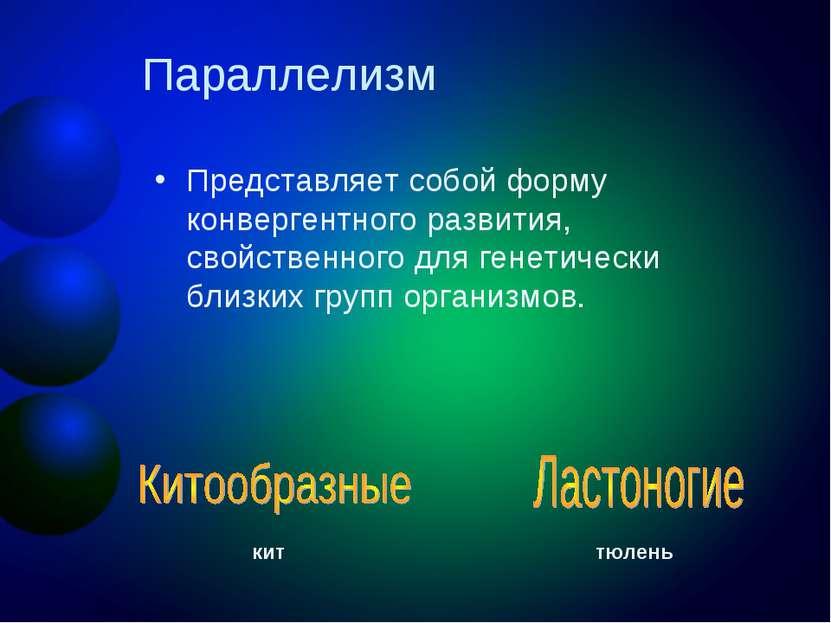 Параллелизм Представляет собой форму конвергентного развития, свойственного д...