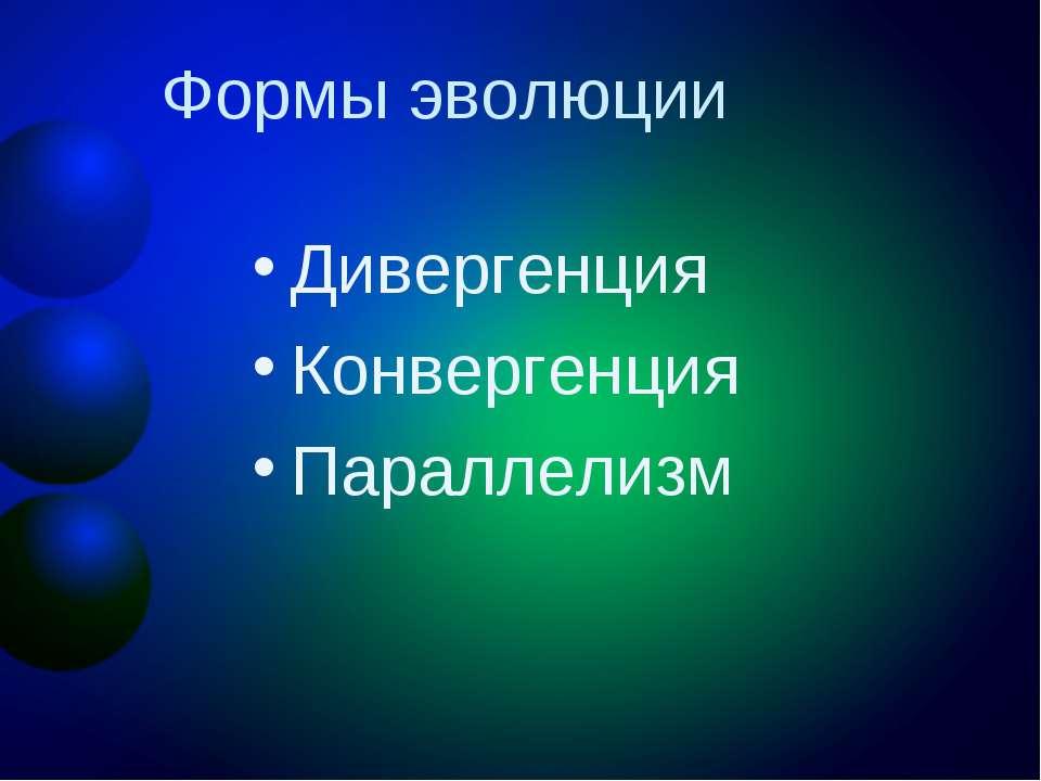 Формы эволюции Дивергенция Конвергенция Параллелизм