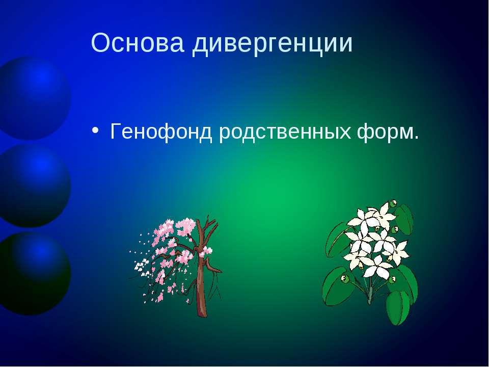 Основа дивергенции Генофонд родственных форм.
