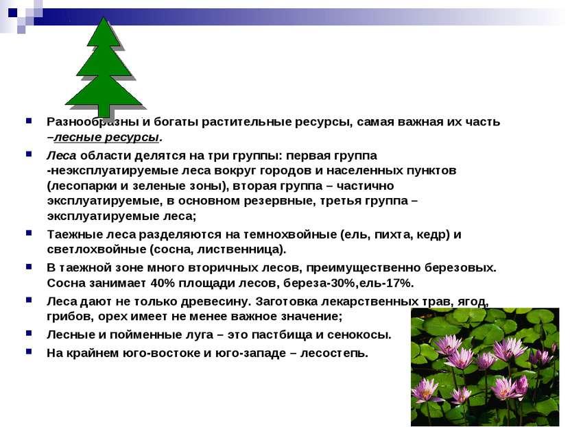 Разнообразны и богаты растительные ресурсы, самая важная их часть –лесные рес...
