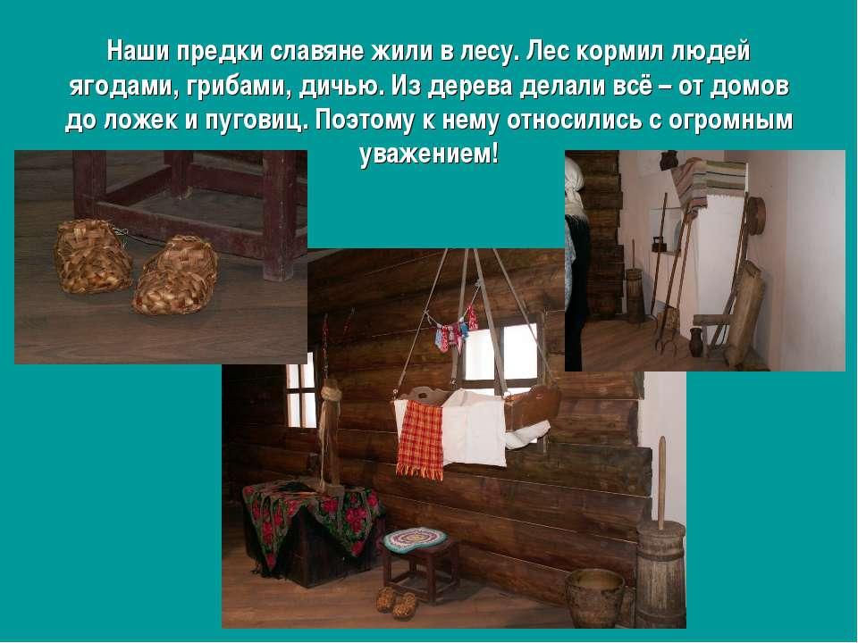Наши предки славяне жили в лесу. Лес кормил людей ягодами, грибами, дичью. Из...