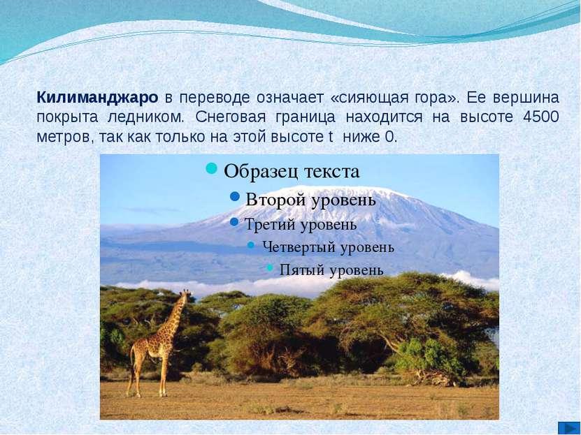 Килиманджаро в переводе означает «сияющая гора». Ее вершина покрыта ледником....
