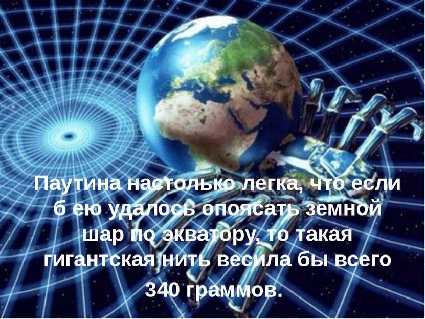 Паутина настолько легка, что если б ею удалось опоясать земной шар по экватор...