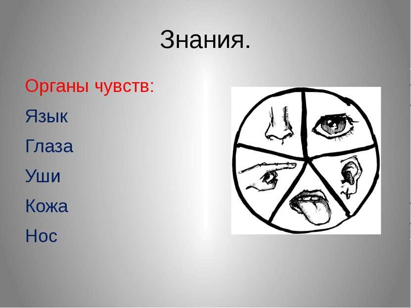 Знания. Органы чувств: Язык Глаза Уши Кожа Нос