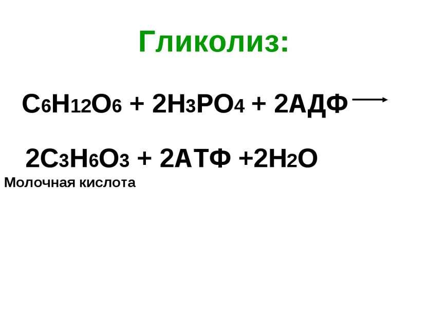 Гликолиз: С6Н12О6 + 2Н3РО4 + 2АДФ 2С3Н6О3 + 2АТФ +2Н2О Молочная кислота