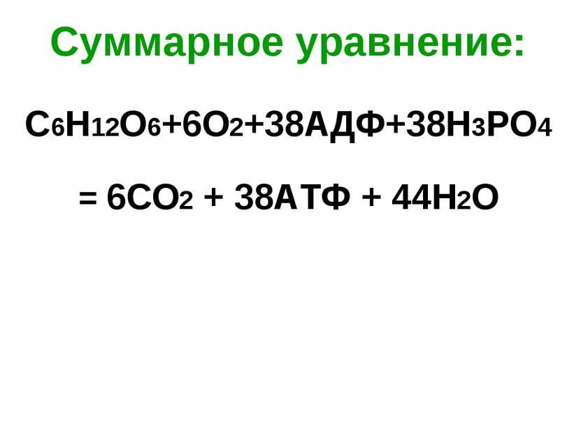 Суммарное уравнение: С6Н12О6+6О2+38АДФ+38Н3РО4 = 6СО2 + 38АТФ + 44Н2О