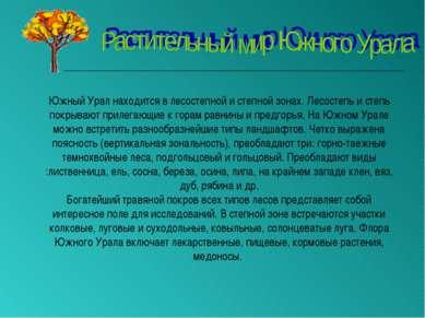 Южный Урал находится в лесостепной и степной зонах. Лесостепь и степь покрыва...