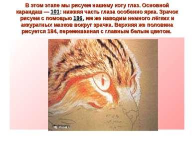 В этом этапе мы рисуем нашему коту глаз. Основной карандаш — 101: нижняя част...