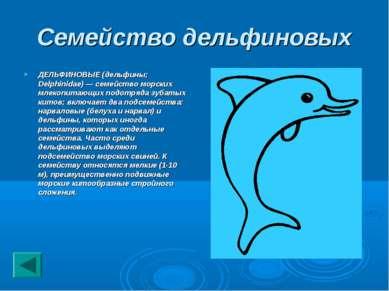 Семейство дельфиновых ДЕЛЬФИНОВЫЕ (дельфины; Delphinidae) — семейство морских...