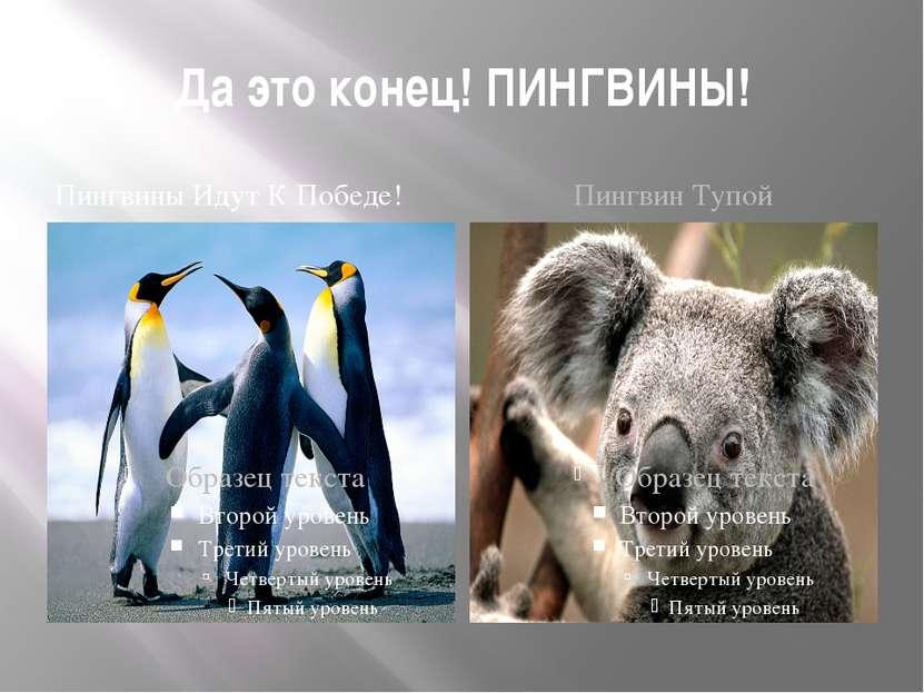 Да это конец! ПИНГВИНЫ! Пингвины Идут К Победе! Пингвин Тупой