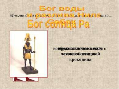 Многие боги египтян были похожи на животных. изображался человеком с головой ...