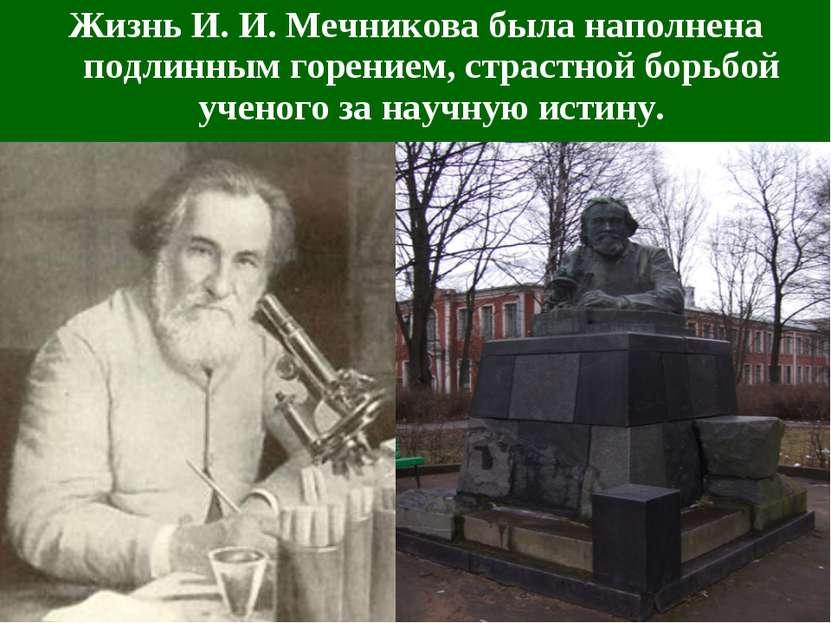 Жизнь И.И.Мечникова была наполнена подлинным горением, страстной борьбой уч...