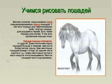 Учимся рисовать лошадей Многие столетия, люди развили сотни специализированны...