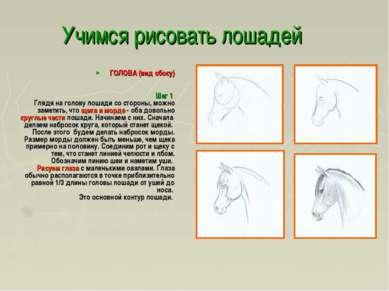 Учимся рисовать лошадей ГОЛОВА (вид сбоку) Шаг 1 Глядя на голову лошади со ст...