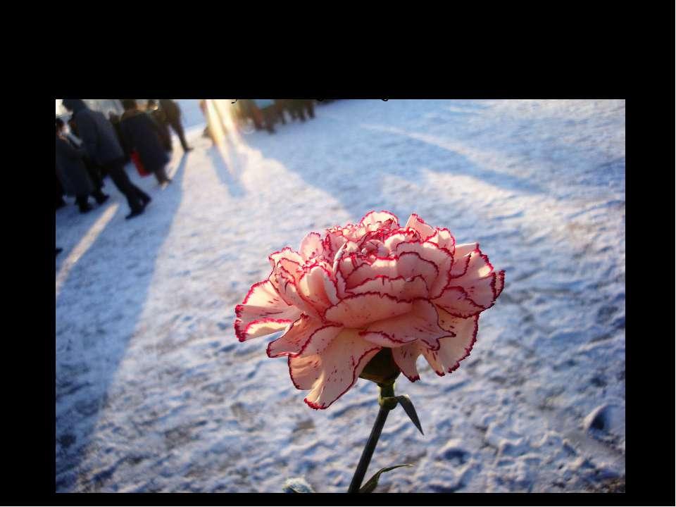 27 января - это, самый главный праздник в жизни города. 66-летнюю годовщину п...