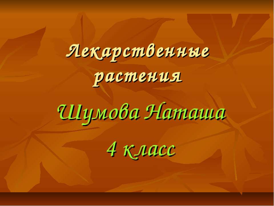 Лекарственные растения Шумова Наташа 4 класс