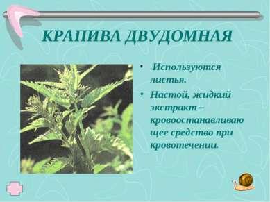 КРАПИВА ДВУДОМНАЯ Используются листья. Настой, жидкий экстракт – кровоостанав...