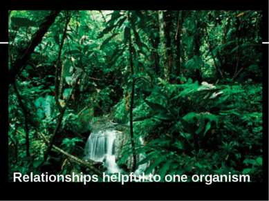 Relationships helpful to one organism